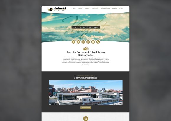 Commercial Real Estate Website Design Homepage Old